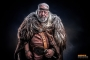 krolopgerst_ritterstock_gray_bg_the_viking_part1_028-AdobeRGB_edit404